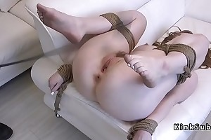 Tied apropos pale babe banged and whipped