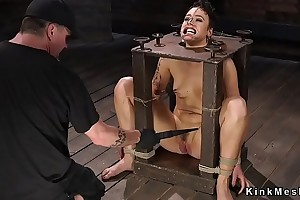Hogtied take chair gets whipped